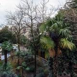 Вид с балкона