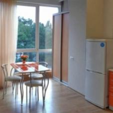 Однокомнатная квартира на Светлане рядом с Курортным проспектом.